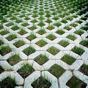beautiful-grassy-pavers